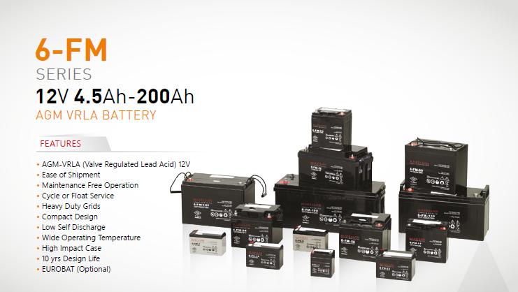 Battery AGM VRLA Type